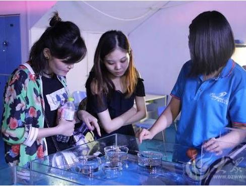 """学校研学考察团走进蓬莱 """"海文化""""研学课程受欢迎"""