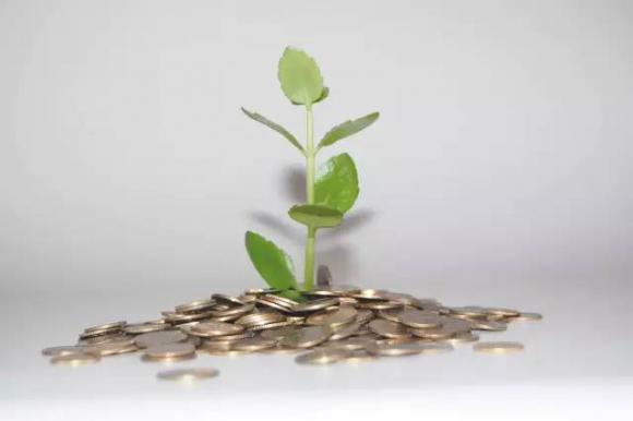 山东省三项机制发力节能减排 年度减排优秀市最高可获奖1000万元