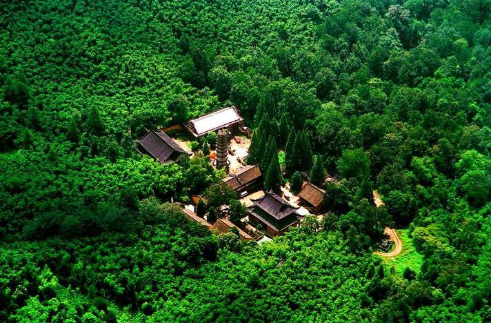 发展绿水青山 山东省全面建立五级林长制体系