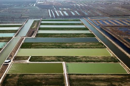 投资166.37亿元!泰安打造山水林田湖草生态保护修复工程