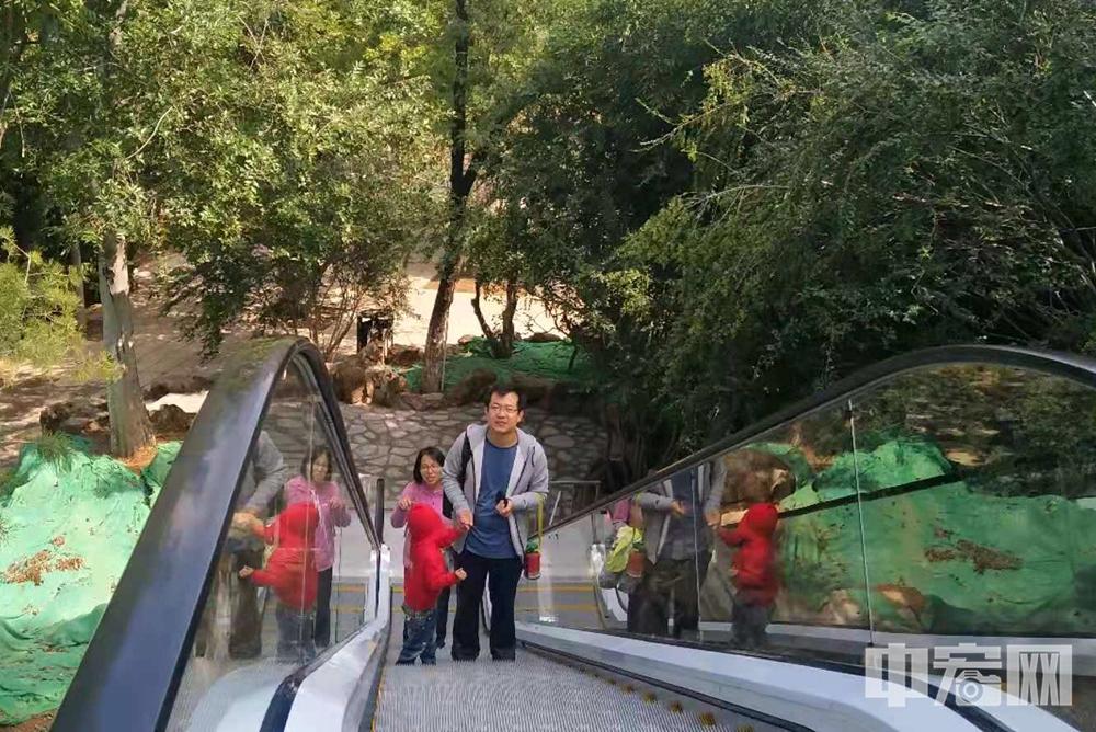 便民!济南佛慧桥加装电梯获市民游客点赞