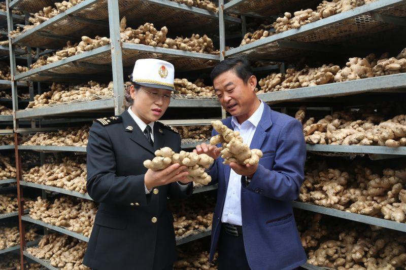 图为:海关关员在大姜加工企业开展质量检查%20%20胡明文摄.jpg