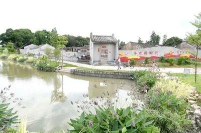 潍坊市大力推进农村人居环境整治行动 村容村貌明显改善