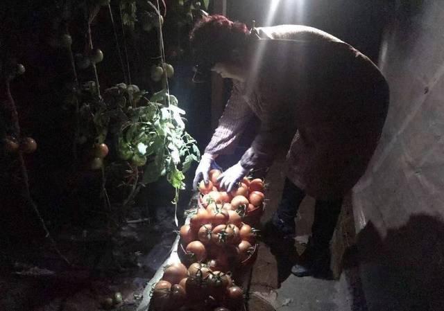 国家发改委:首批350吨蔬菜从寿光启运捐赠武汉
