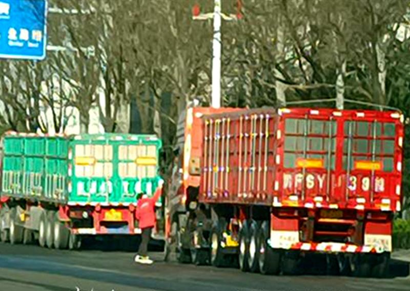 潍坊昌乐县石油公司员工街头发放优惠券惹市民担忧,回应:已取消