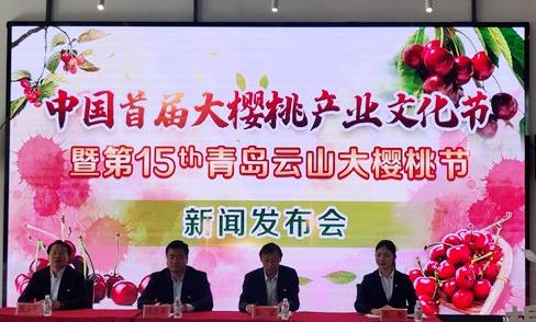 以樱桃为媒 中国首届大樱桃产业文化节将在平度开幕