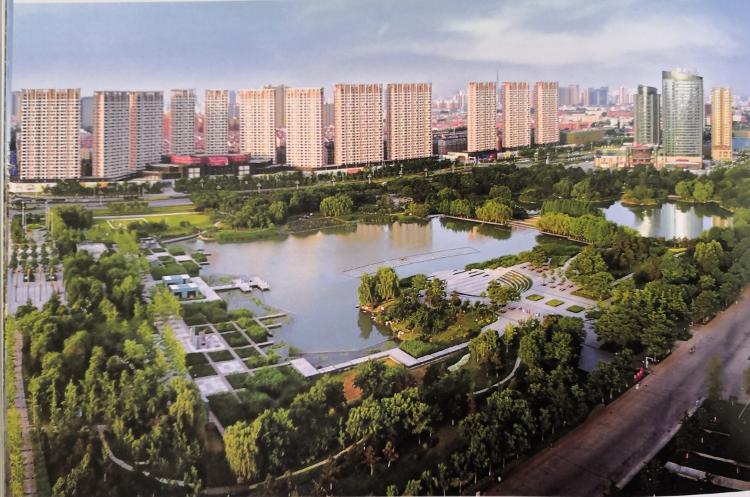 济宁湿地面积增至15.88万公顷,国际湿地城市认证通过国家评审