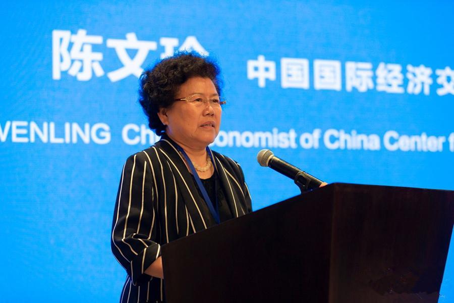 中宏观察家陈文玲:全球战疫中国经济如何逆势突围?