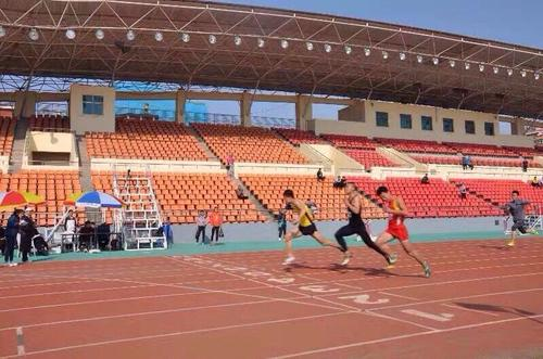 山东体育学院探索专业体育院校服务奥运战略新路径