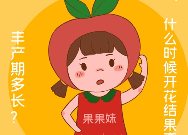 鲁证期货:我是乐滋滋的小苹果(四)