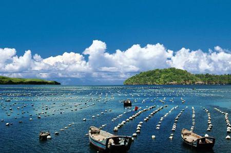孙军访谈:推进海洋经济与治理现代化、高质量发展