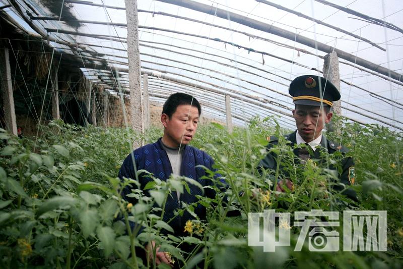 10:高占喜经常到农业大棚中为群众捎去优质的农肥农药.jpg