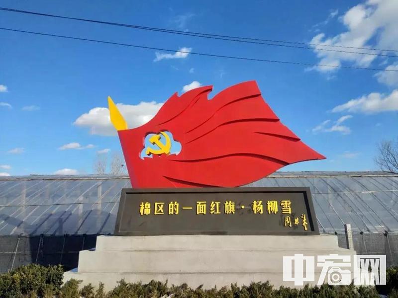 """滨州市杨柳雪镇""""红旗杨柳雪——2020,只争朝夕""""之(一)疫情坚守"""
