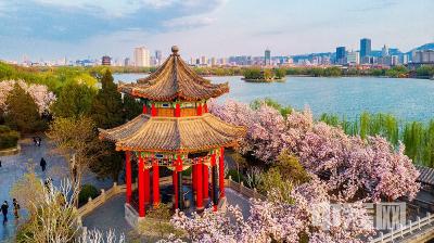 踏青赏花不用远游 来济南天下第一泉风景区赴一场春天之约吧!