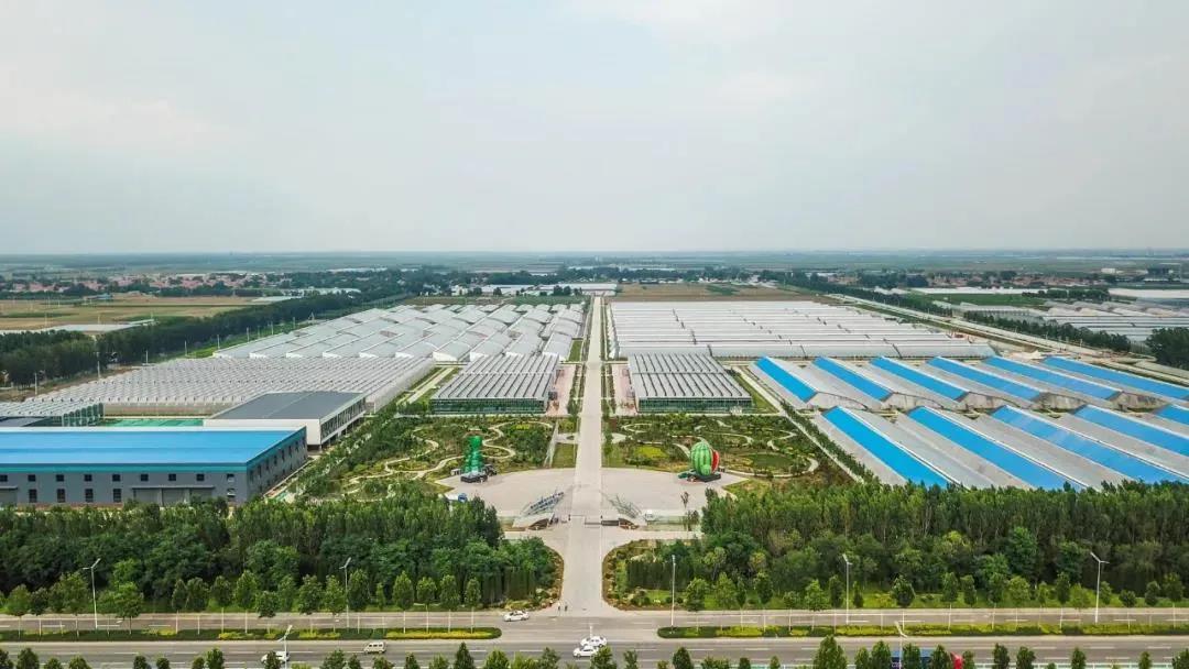 国有资本助力乡村振兴 潍坊农创蓄势发力新农村建设样板!